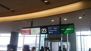 Departure_gate_narita