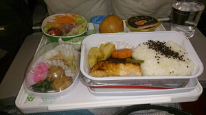 Meal_in_flight